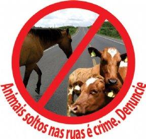 Animais soltos nas ruas é crime. Denuncie !