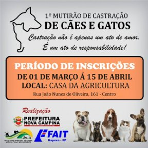 1º MUTIRÃO DE CASTRAÇÃO DE CÃES E GATOS