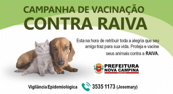 Campanha de vacinação contra raiva começa no dia 6 de agosto, veja onde levar seu pet