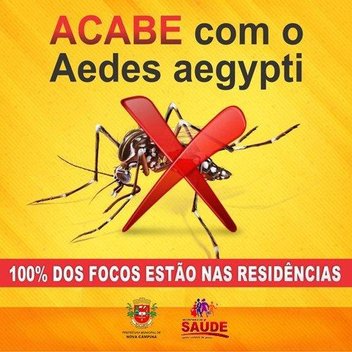 Agentes Comunitários de Saúde fazem visitas domiciliares para detectar possíveis focos de dengue.